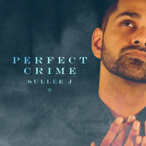 Perfect Crime Cover Art