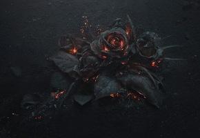 wpid-burnt-1.jpg